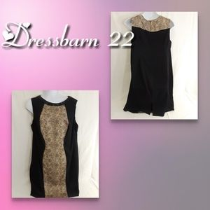 Dressbarn collection dress size 22 colorblock